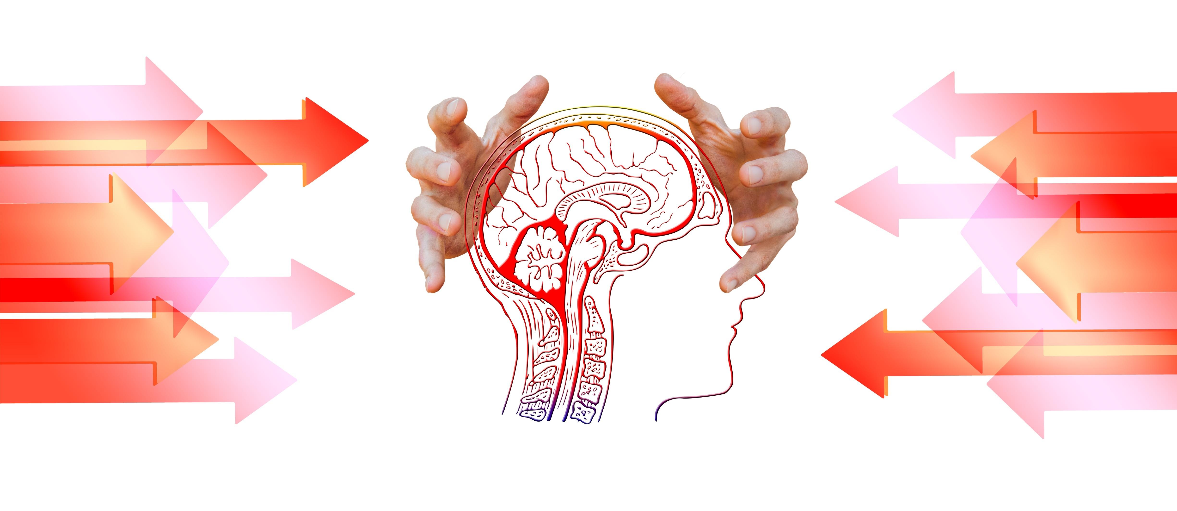 Corsi Biofeedback e Neurofeedback